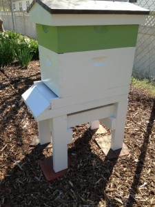 After looking at my hive, Erin has decided to go back and build a stand for her hive....the addition of a beautiful stand became a must for her!